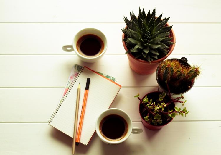claudialeclercq-solalnorte-coffee.jpg